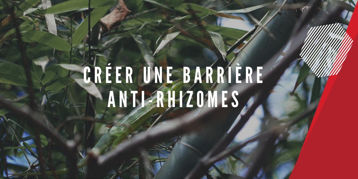 barriere anti racine